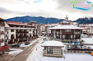 Astera Bansko Apartment (13)