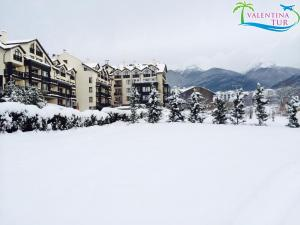 Premier Luxury Mountain Resort  (8)